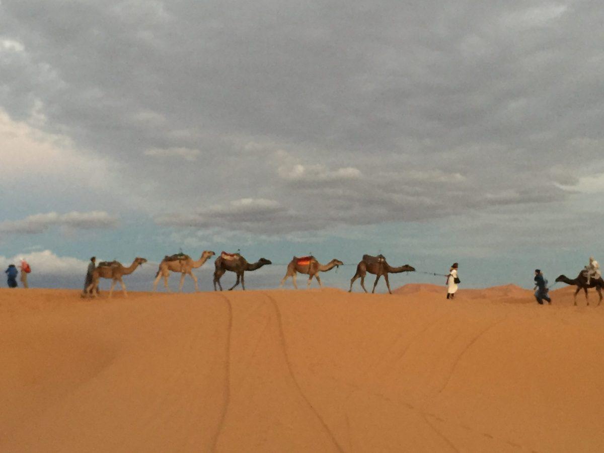 Marocco, città imperiali e deserto